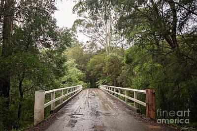 Photograph - Crossing The Yarra by Linda Lees