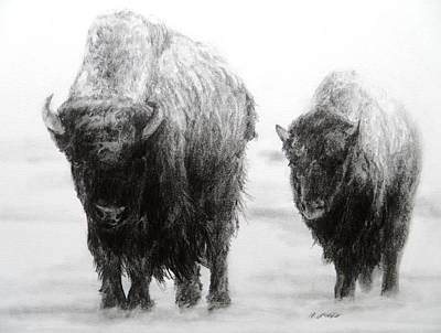 Crossing Yellowstone Art Print