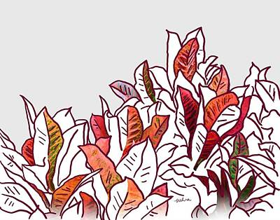 Digital Art - Croton 8 by Usha Shantharam