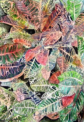 Croton Tropical Art Print Art Print by Derek Mccrea