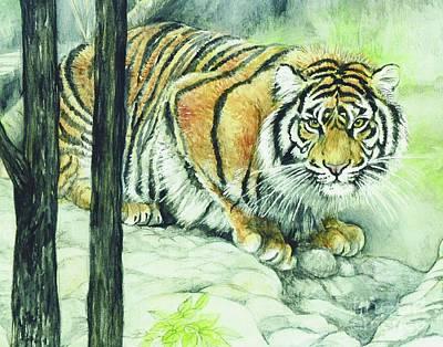 Fitzsimons Painting - Crouching Tiger by Morgan Fitzsimons