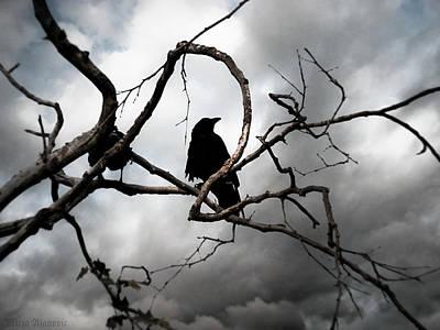 Crow 0 Final Cut Original