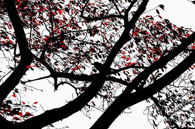 Crow And Tree In Black White And Red Art Print
