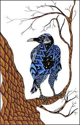 Drawing - Crow by Barbara McConoughey