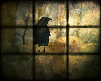 Emo Digital Art - Crow Behind The Window by Gothicrow Images
