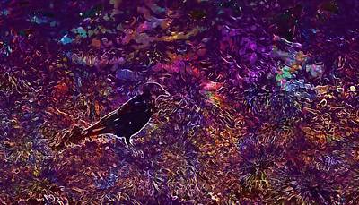 Digital Art - Crow Bird Raven Bird Raven Birds  by PixBreak Art