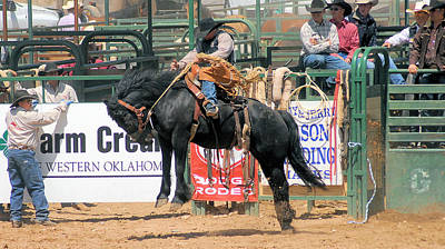 Photograph - Crow Hopping Saddle Bronc by Cheryl Poland