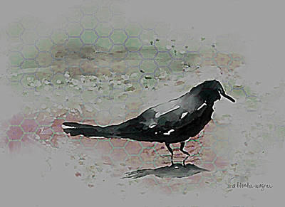 Blackbird Digital Art - Crow In A Puddle by Arline Wagner