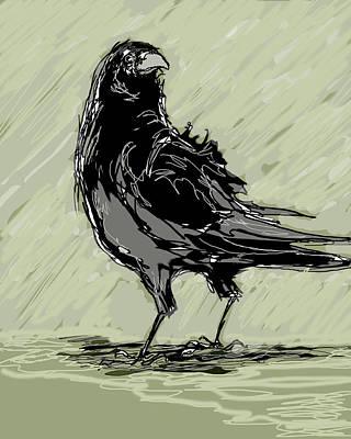 Crow In Rain Art Print by Peggy Wilson