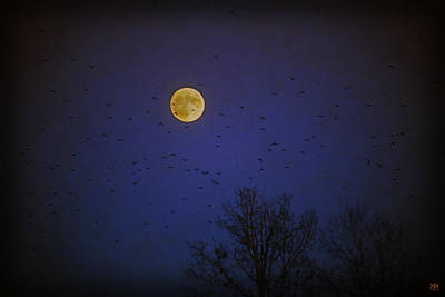 Photograph - Crow Moon Number 2 by John Meader