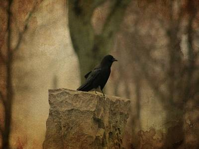 Crow On A Tombstone Print by Gothicrow Images