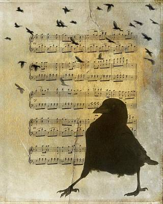 Crow. Bird Music Photograph - Crow Strut Music Sheet by Gothicrow Images