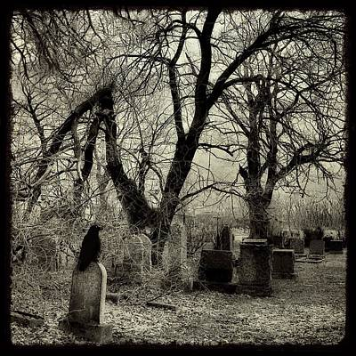 Gnarly Photograph - Crow Waits On Tombstone by Gothicrow Images