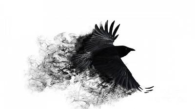 Pyrography Digital Art - Crow Wallpaper by Andy Maryanto