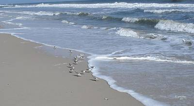 Photograph - Crowded Day At The Beach by Judith Rhue