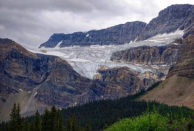 Photograph - Crowfoot Glacier by Heather Vopni