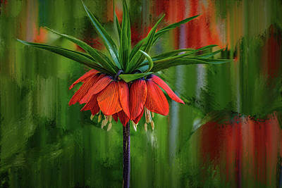 Crown-imperial Abstract #h5 Art Print