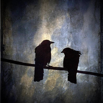 Crows And Sky Reflections Art Print by Carol Leigh