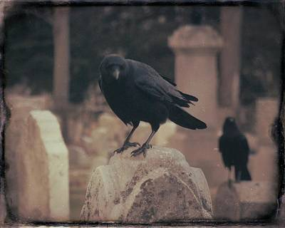 Sepia Crows Atop Tombstones  Print by Gothicrow Images