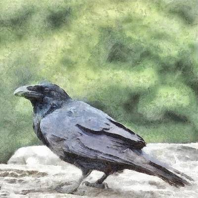 Painting - Crows Everywhere Are Equally Black by Tracey Harrington-Simpson