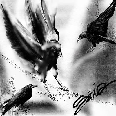 Ipad Art Drawing - Crows by Lidija Ivanek - SiLa