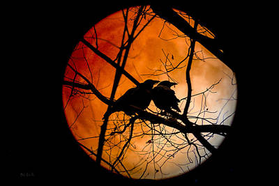 Moon Photograph - Crows Moon by Bob Orsillo