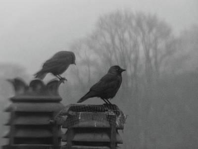 Crows On Chimney Tops Art Print