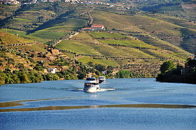Cruising Douro River Valley Art Print by Jacqueline M Lewis