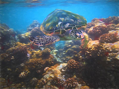 Photograph - Cruising The Reef by Susan Rissi Tregoning