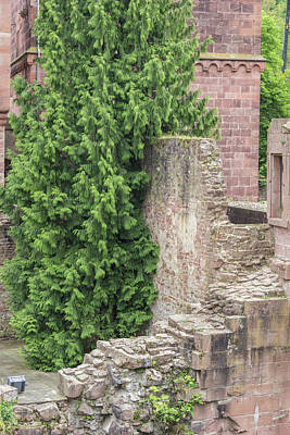 Watercolor Typographic Countries - Crumbling Wall Heidelberg Castle by Teresa Mucha