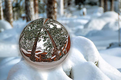 Photograph - Crystal Ball by Maria Coulson