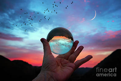 Photograph - Crystal Ball by Mimi Ditchie