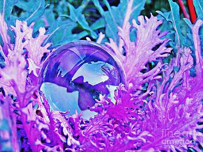 Photograph - Crystal Ball Project 66 by Sarah Loft