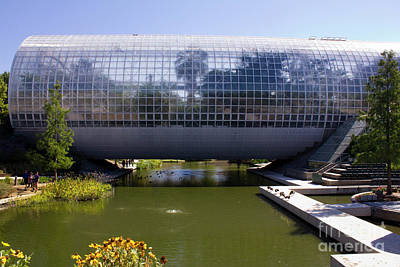 Photograph - Crystal Bridge Conservatory by Alycia Christine