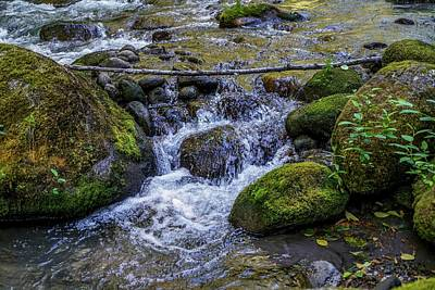 Green Photograph - Crystal Clear Waters by Ric Schafer