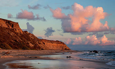 Crystal Cove Reflections Art Print by Cliff Wassmann
