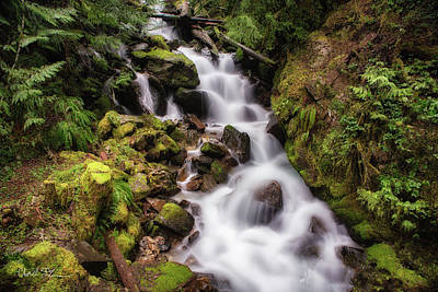 Photograph - Crystal Creek Cascade by Charlie Duncan