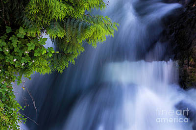 Photograph - Crystal Creek Waterfalls by Sal Ahmed