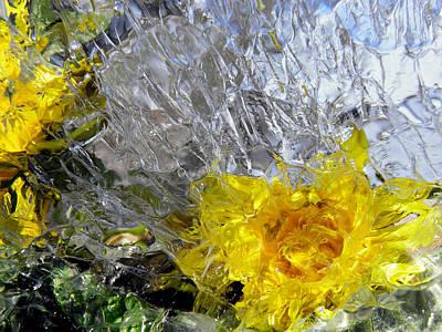 Dandelion Digital Art - Crystal Flowers by Sami Tiainen