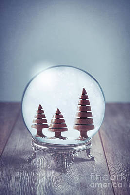 Hand Carved Photograph - Crystal Globe With Wooden Trees by Amanda Elwell