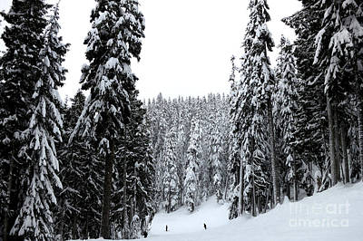 Photograph - Crystal Mountain Skiing 2 by Tanya Searcy