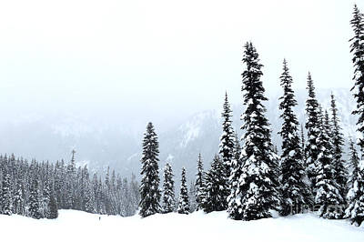 Photograph - Crystal Mountain Skiing by Tanya Searcy