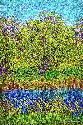 Digital Art - Crystal Pond Radiance by Joel Bruce Wallach