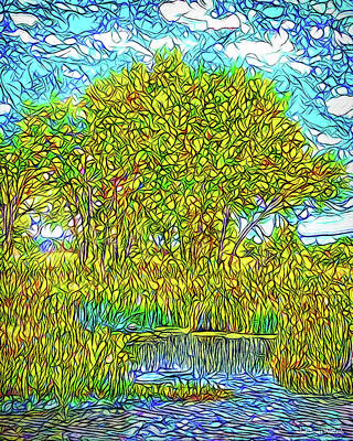 Crystalline Digital Art - Crystalline Trees - Lake In Boulder County Colorado by Joel Bruce Wallach
