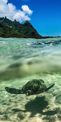 Sea Turtles Photograph - Crytsal by Hudson Marsh
