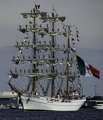 Photograph - Cuauhtemoc  by Steven Richman