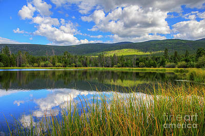Photograph - Cub Creek Pond by Spencer Baugh