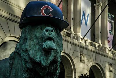 Cub Hat On Art Institute Lion Telephoto Art Print