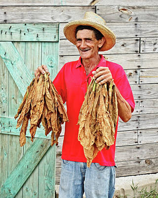 Photograph - Cuban Tobacco Farmer by Dawn Currie