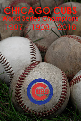 Photograph - Cubs - World Series Champions by David Patterson